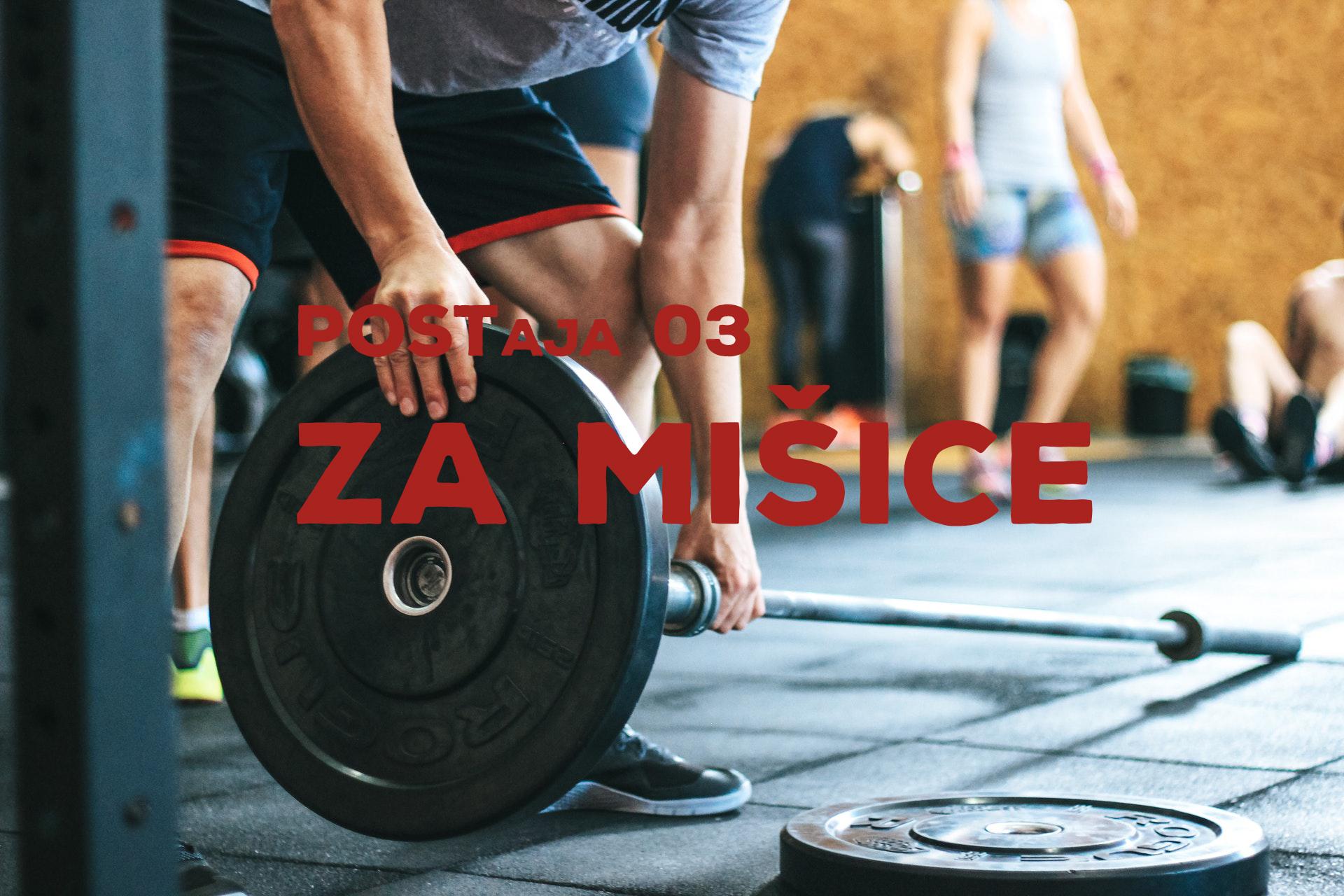 Postaja 03: Za mišice